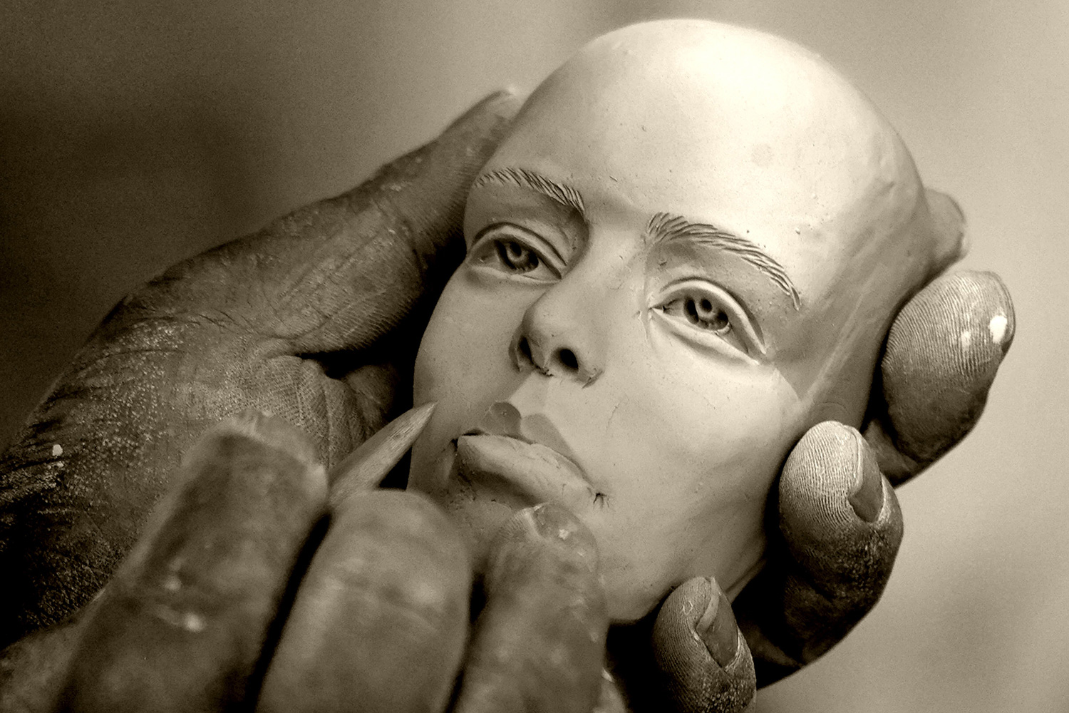 Premium Sculpting Courses