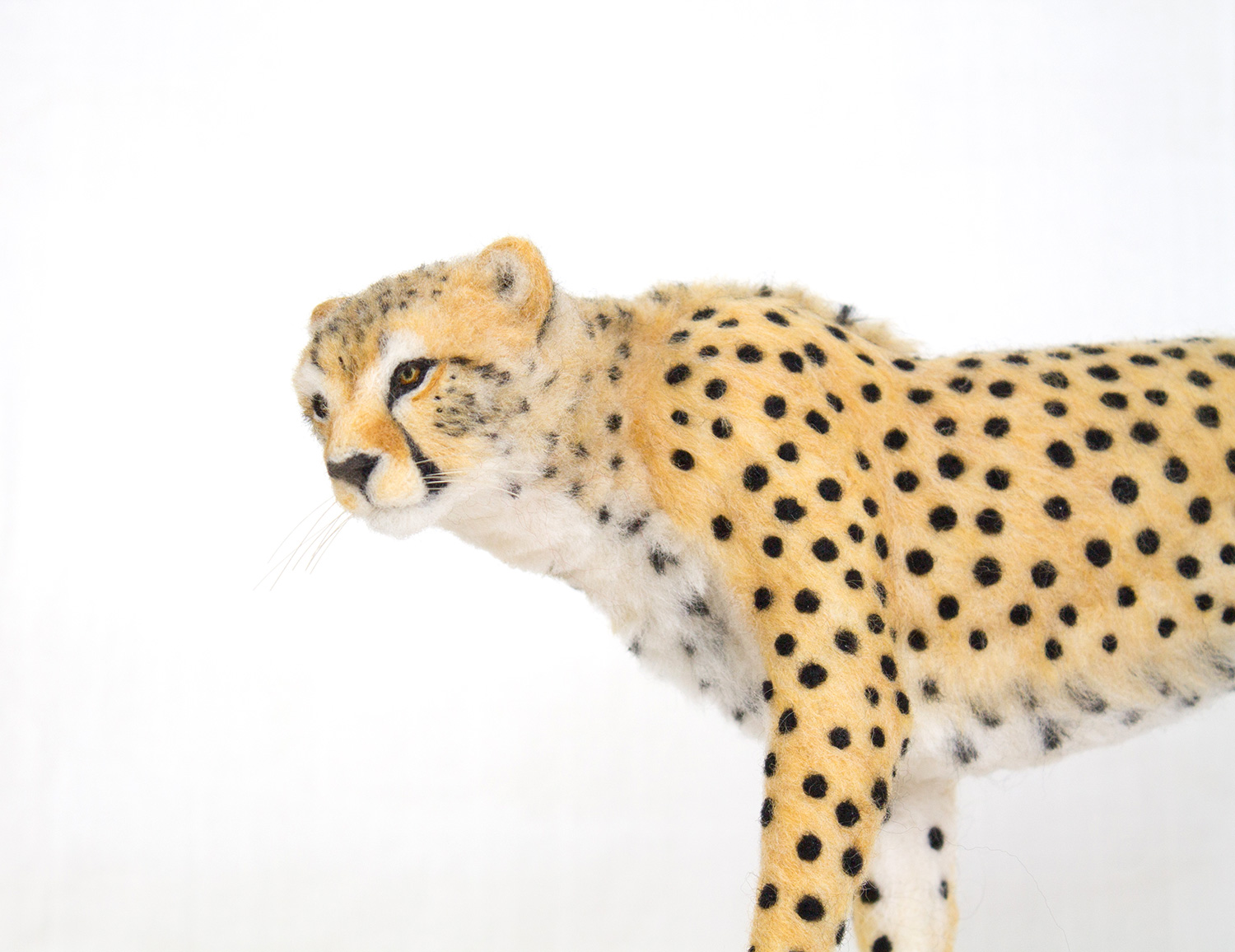 needle-felt-cat-sculpture-15.jpg
