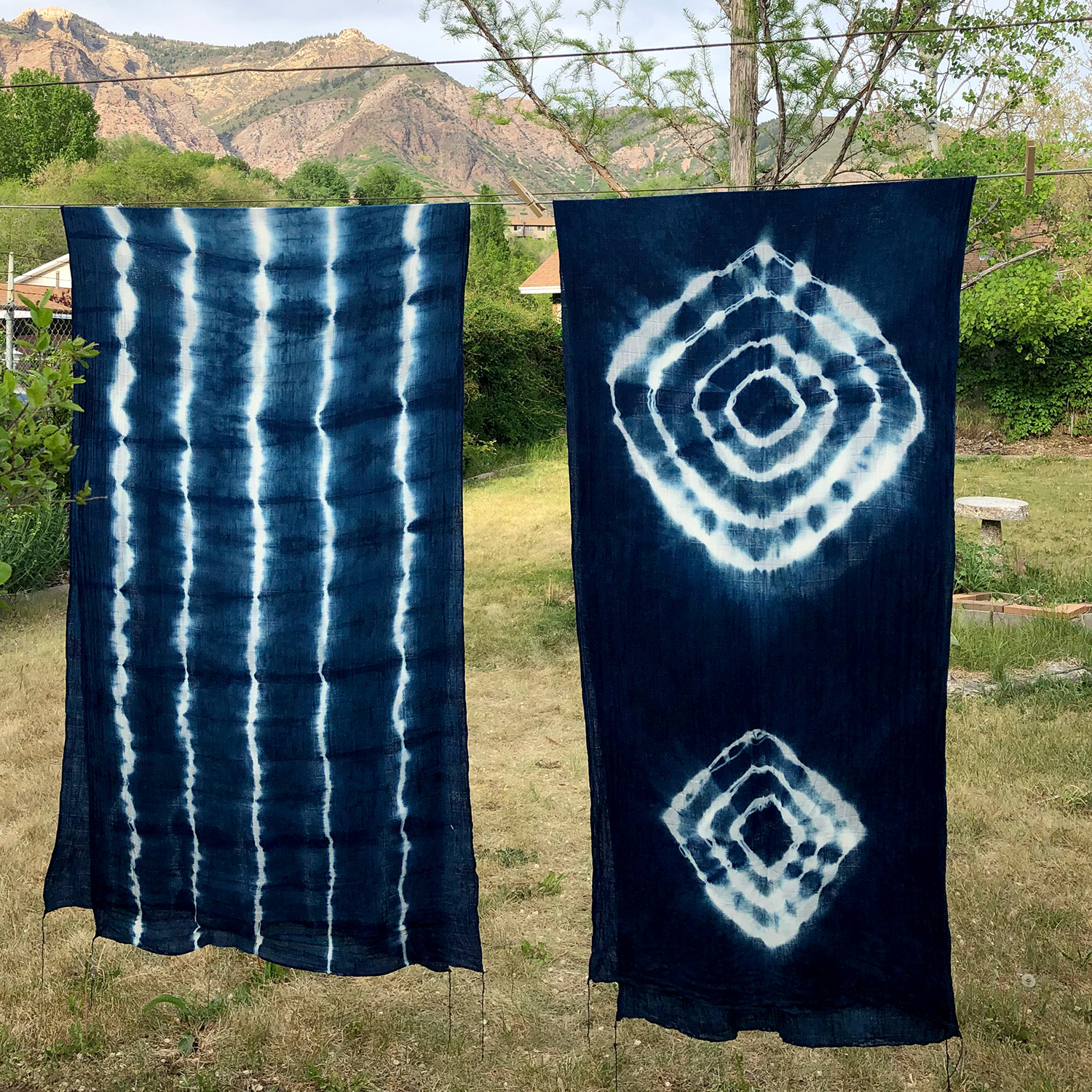 Introduction to Indigo Dyeing LIVE Training with Roxanne Vigos