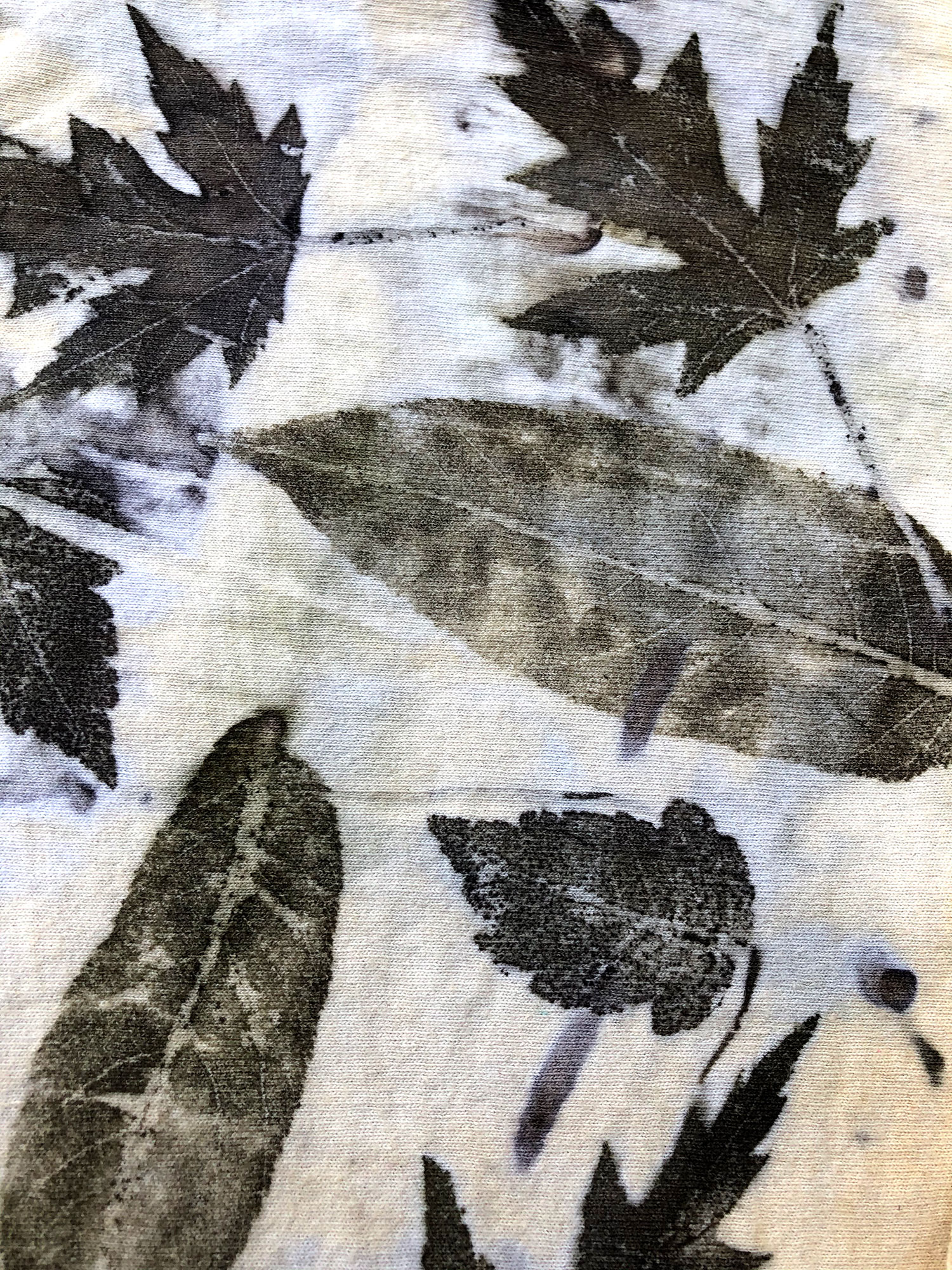 Leaf Prints on Cloth! LIVE w/ Roxanne Vigos